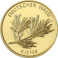 BRD 20 Euro 2013 Deutscher Wald - Kiefer Mzz .G