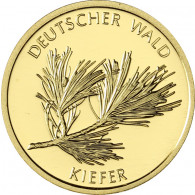 BRD 20 Euro 2013 Deutscher Wald - Kiefer Mzz . J