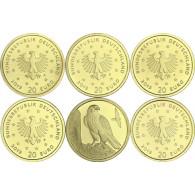 Gold Sondermünzen Wanderfalke 2019 Deutschland Heimische Vögel