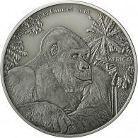 3 Oz Silbermünzen Gorilla - Kongo Gorilla 3 Silver Ounces 2014