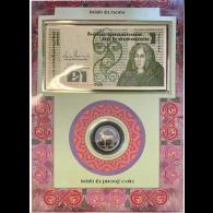 Irland-1-Pfund-Banknote-und-Münze-1