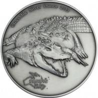 Silbermünze 1 Unze Krokodile 2013 Tokelau von Historia Hamburg