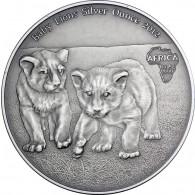 Kongo 1 Oz Silber 2012 Baby Löwen