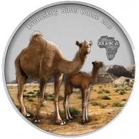 1 Oz Silbermünze Kamerun 2019 in Farbe